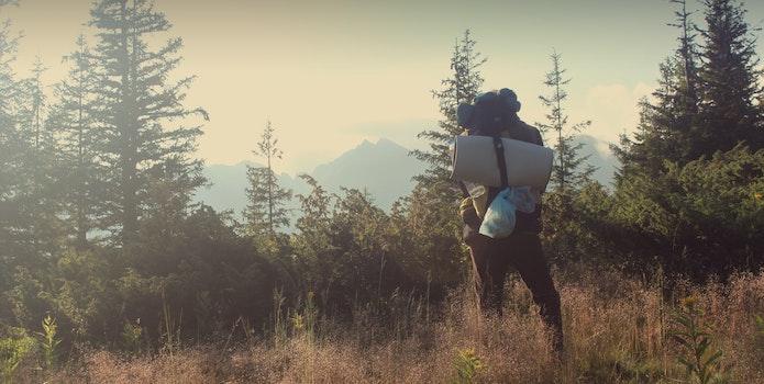Kostenloses Stock Foto zu natur, draußen, wanderer, wandern