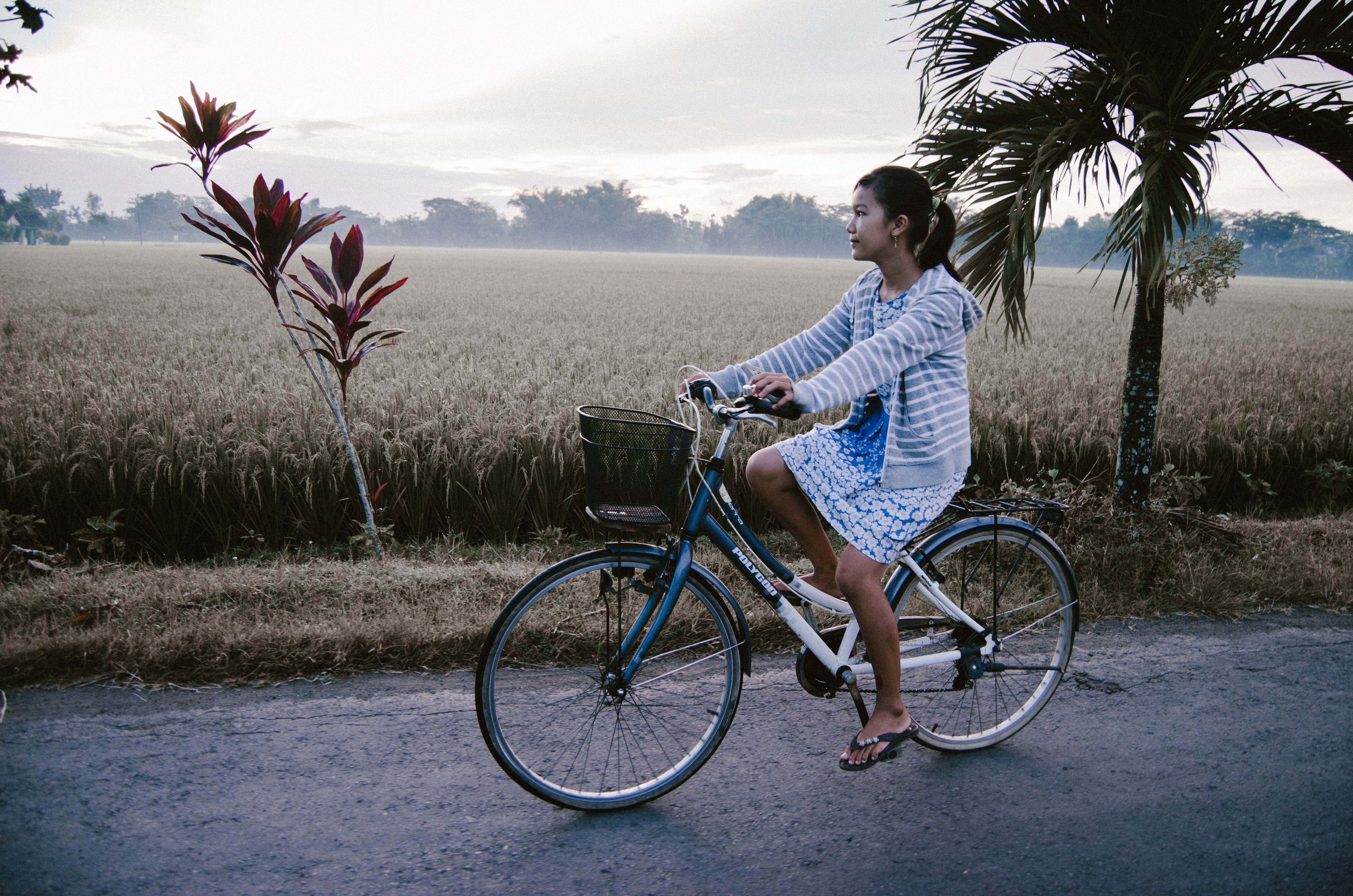 Woman Riding on Blue and White Bicycle