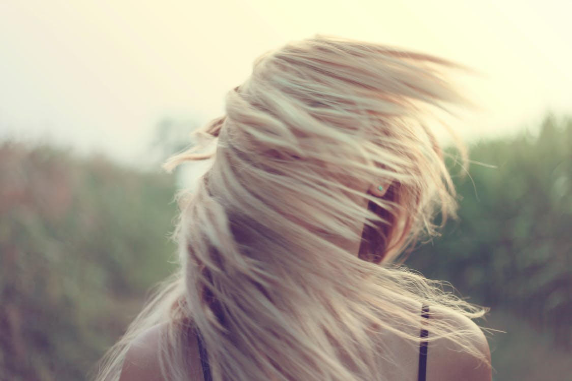 Free stock photo of blonde, girl, hairs