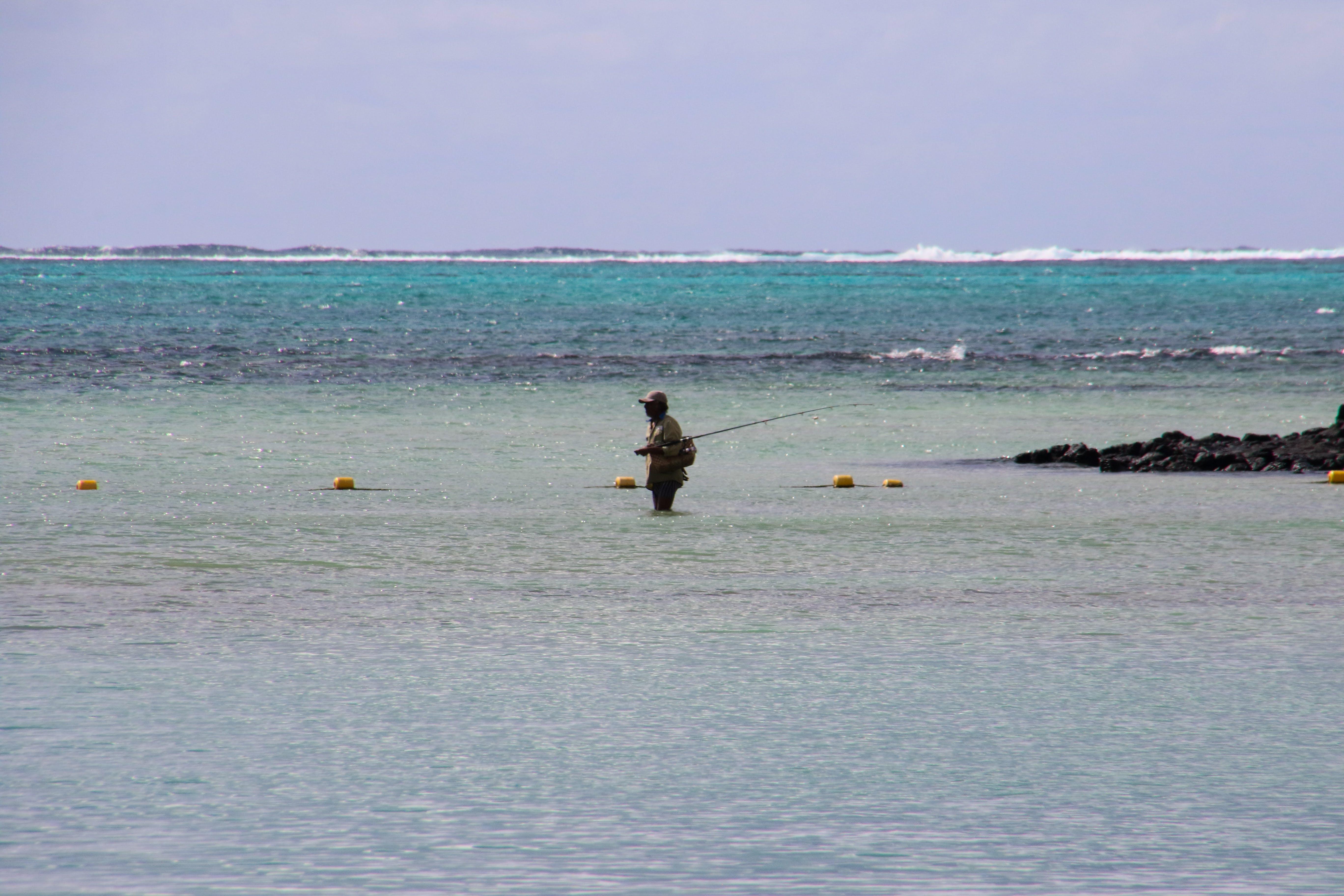 Free stock photo of fishing, sea, nature, holiday