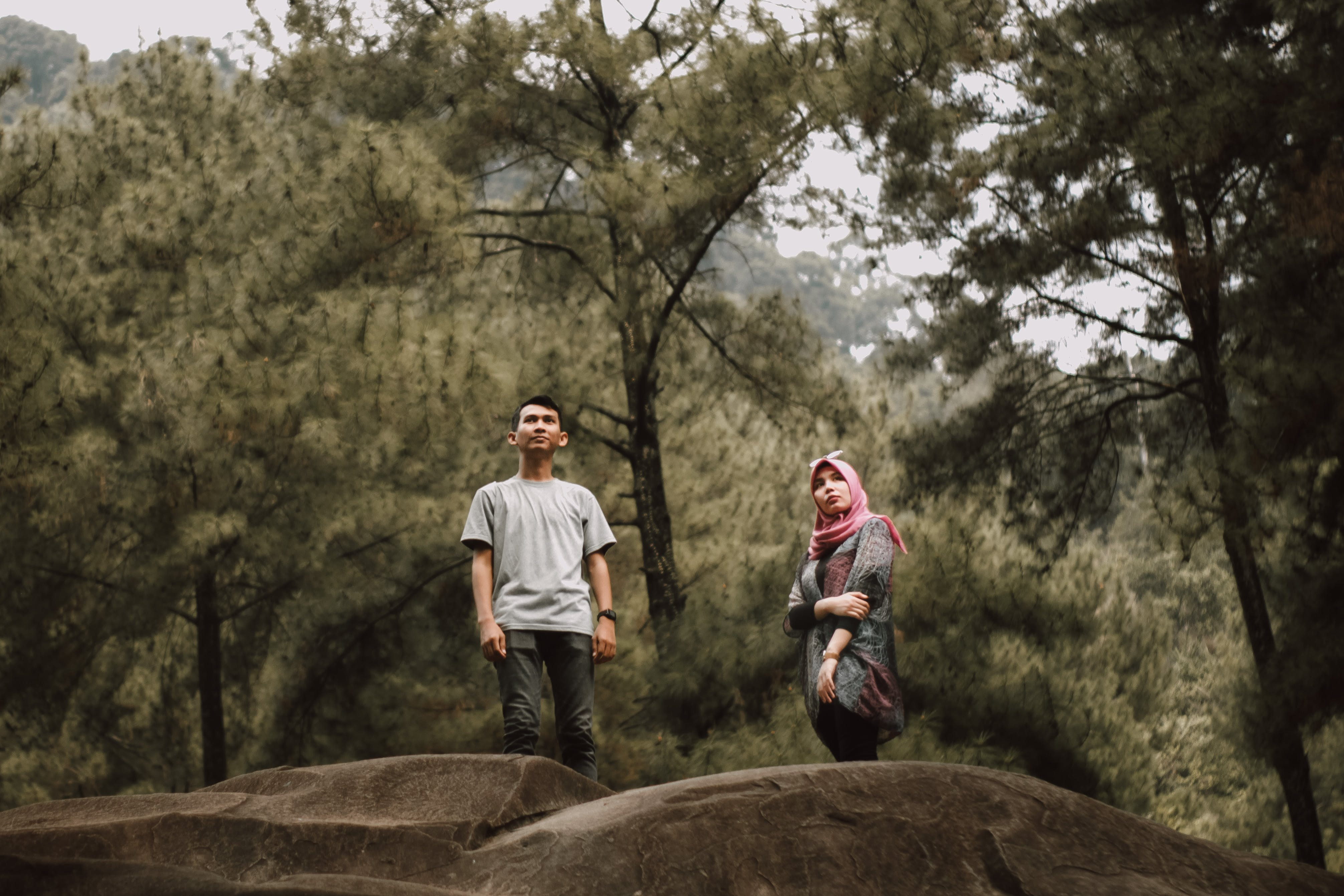 Man And Woman Standing Near Pine Trees