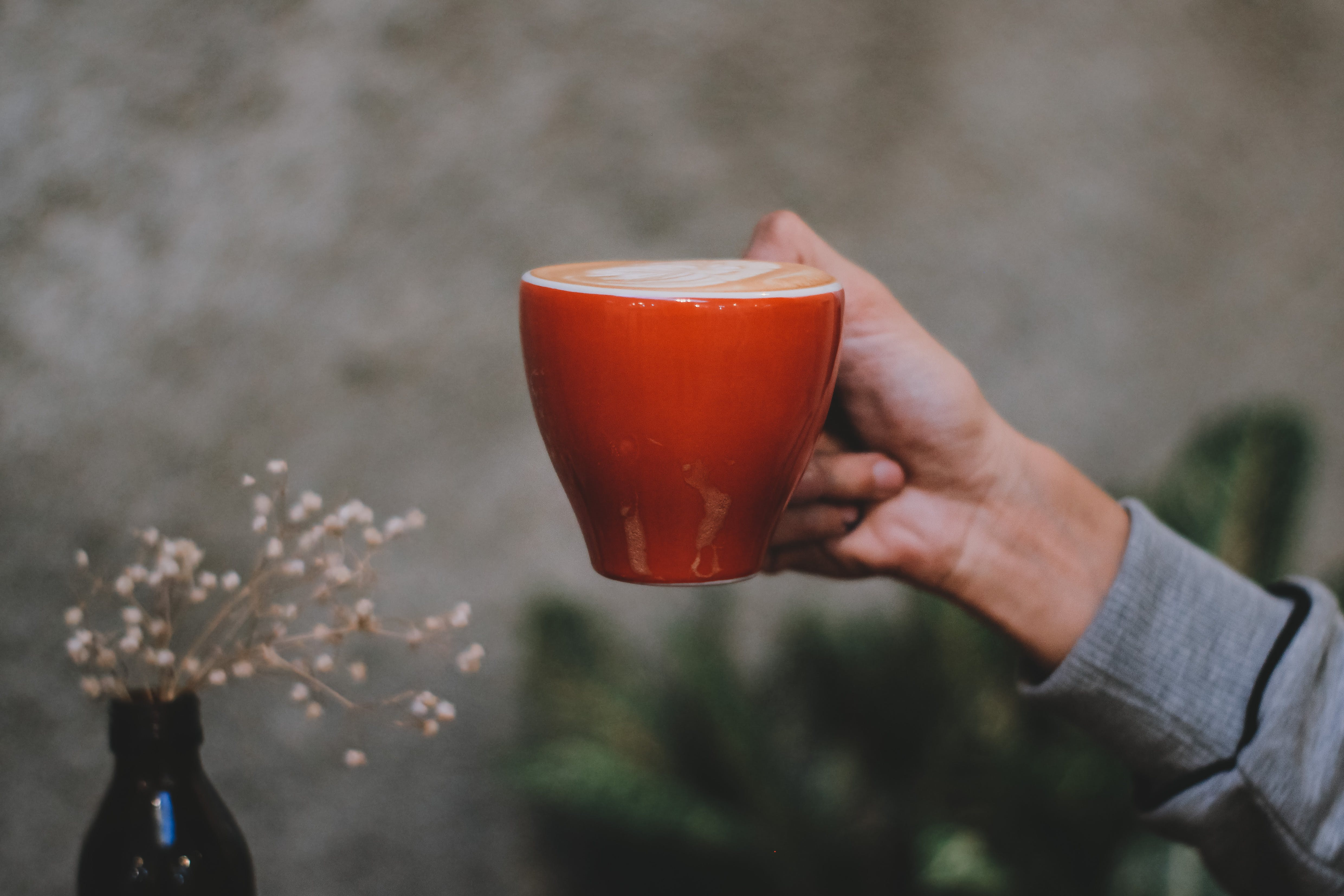 Photo of Hand Holding Red Cup of Coffee