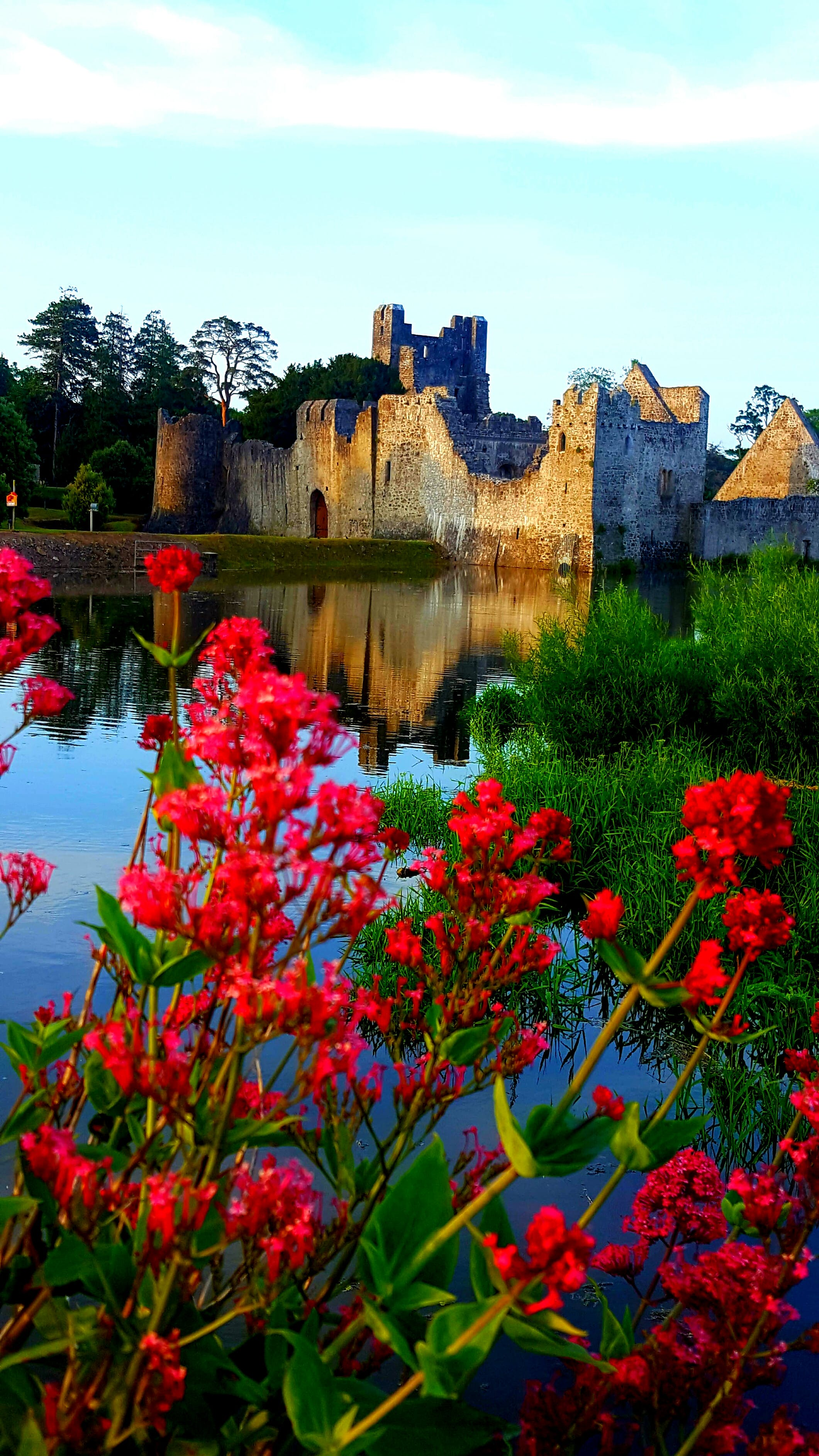 Gratis lagerfoto af irland castle