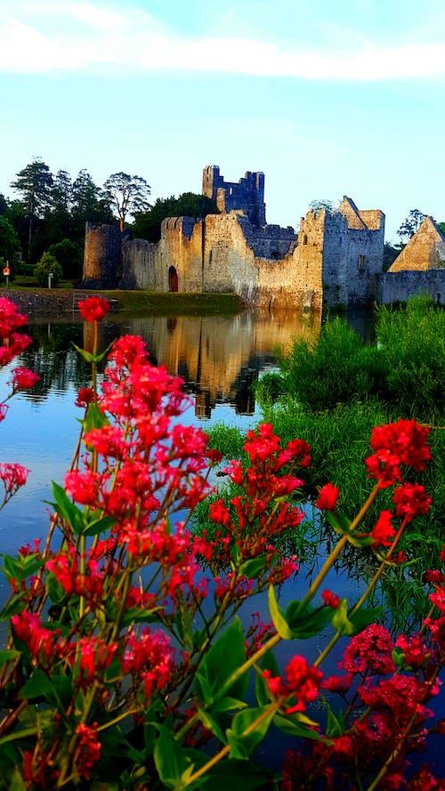 Ảnh lưu trữ miễn phí về lâu đài ireland