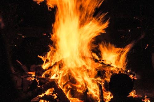 Free stock photo of burn, burner, fire