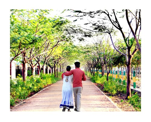 Ilmainen kuvapankkikuva tunnisteilla huvipuisto\, kraaterijärven kansallispuisto, kukkiva puutarha, rakkaus taustakuva