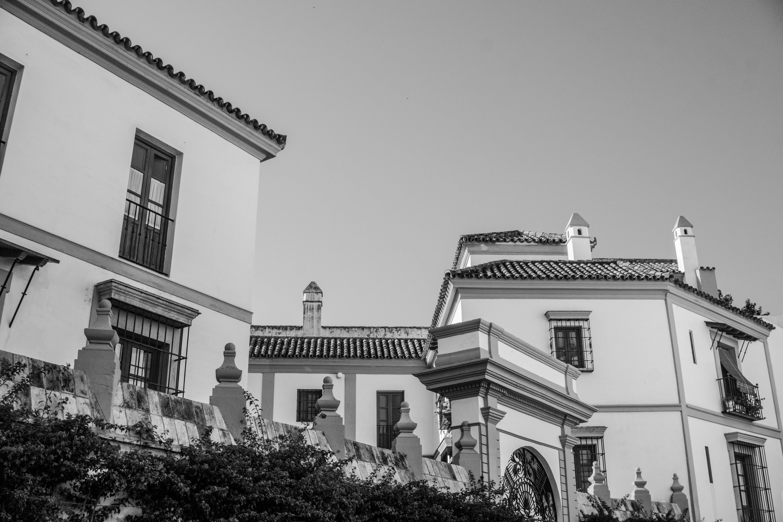 Free stock photo of black, black and white, Seville, spain