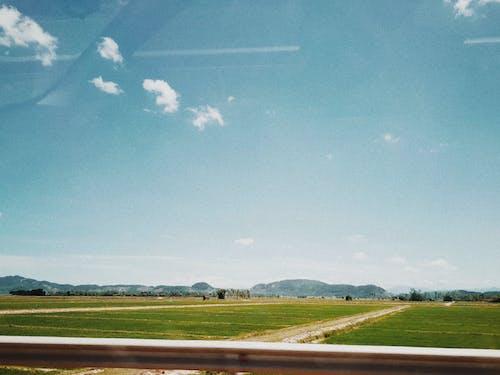 Foto d'estoc gratuïta de alba, camps d'arròs, capvespre, cel blau
