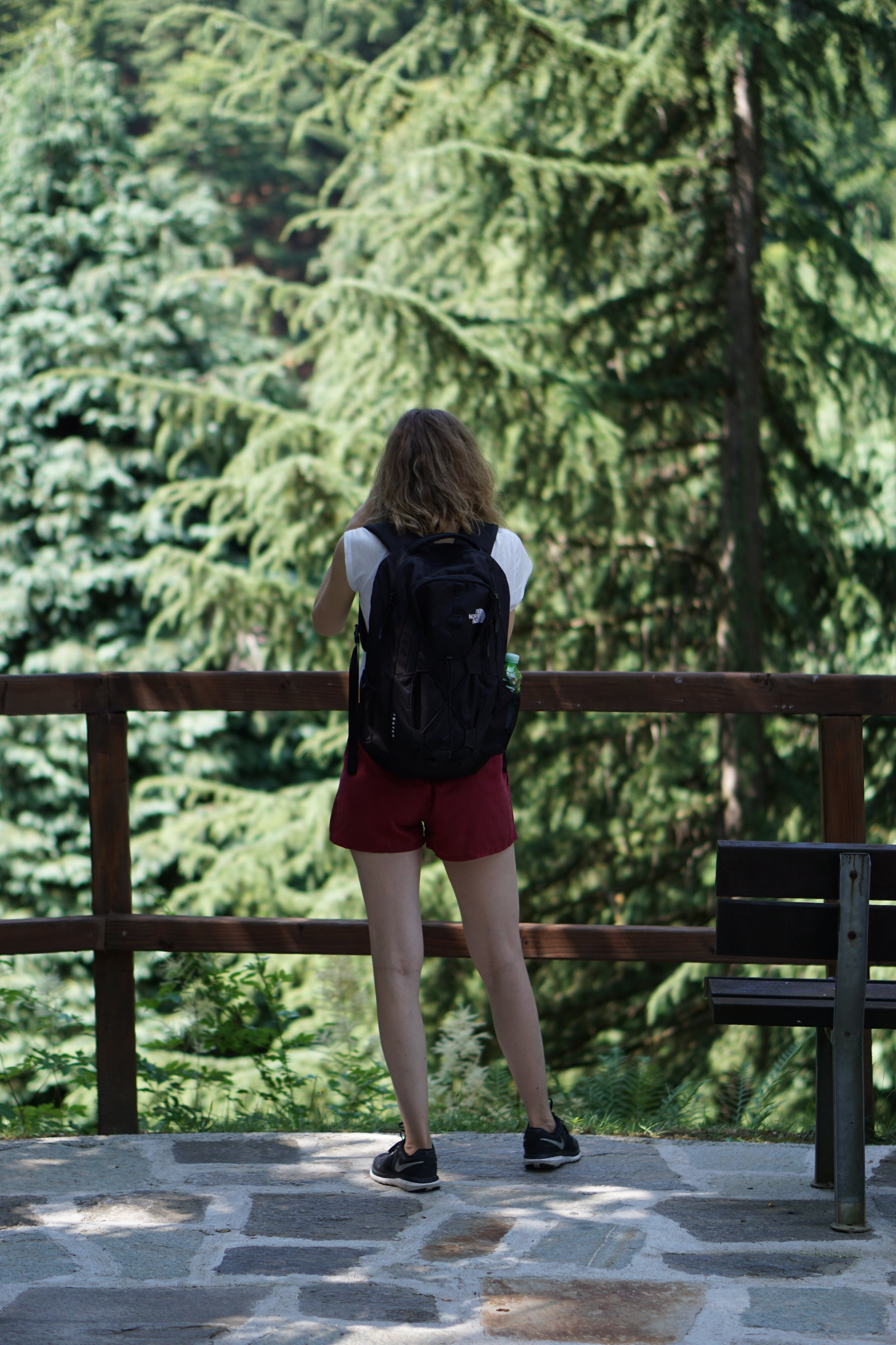 Free stock photo of adventure, forest, girl, mountain
