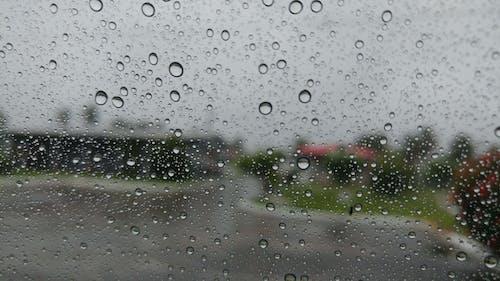 Free stock photo of raindrops, rainy day
