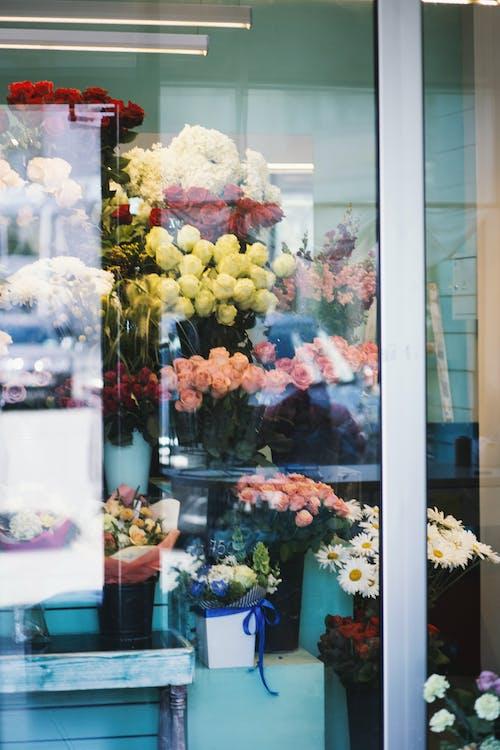 Foto profissional grátis de ação, arranjo de flores, buquê, copo