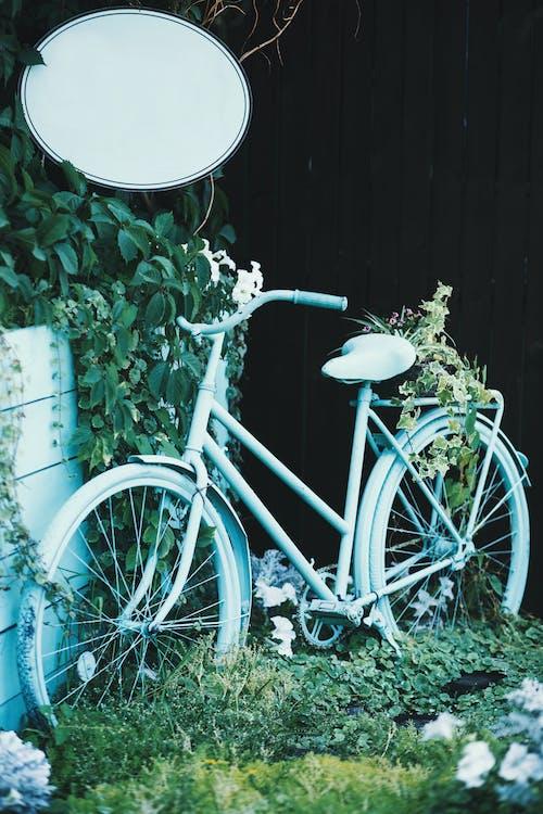 ビンテージ, フラワーズ, フローラ, ホイールの無料の写真素材