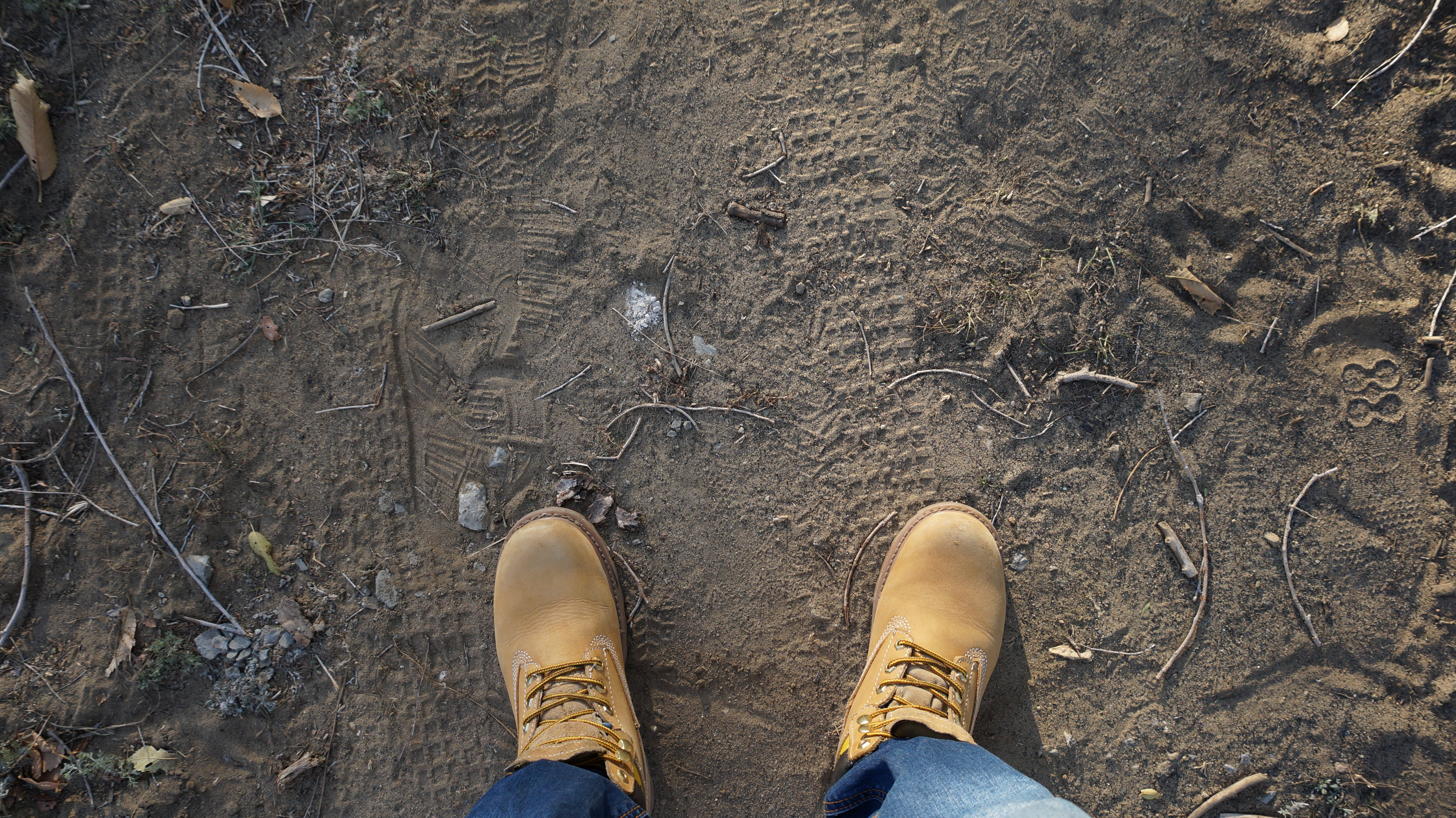 Person Wearing Brown Leather Work Boots