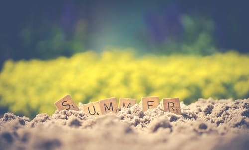 Summer Letter Cube on Soil