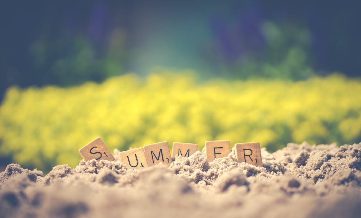 Summer Letter Cube on Soil