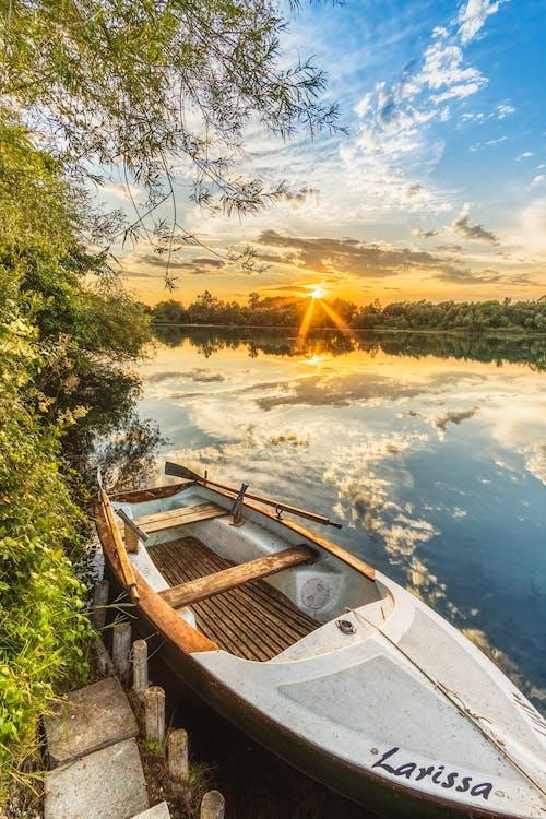 Immagine gratuita di acqua, alberi, barca, barca da pesca
