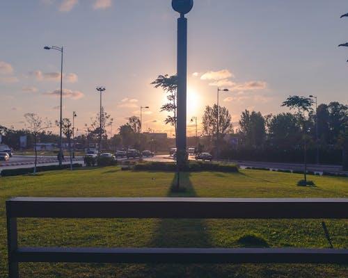 Photos gratuites de arabe, arbres, campagne, ciel nuageux