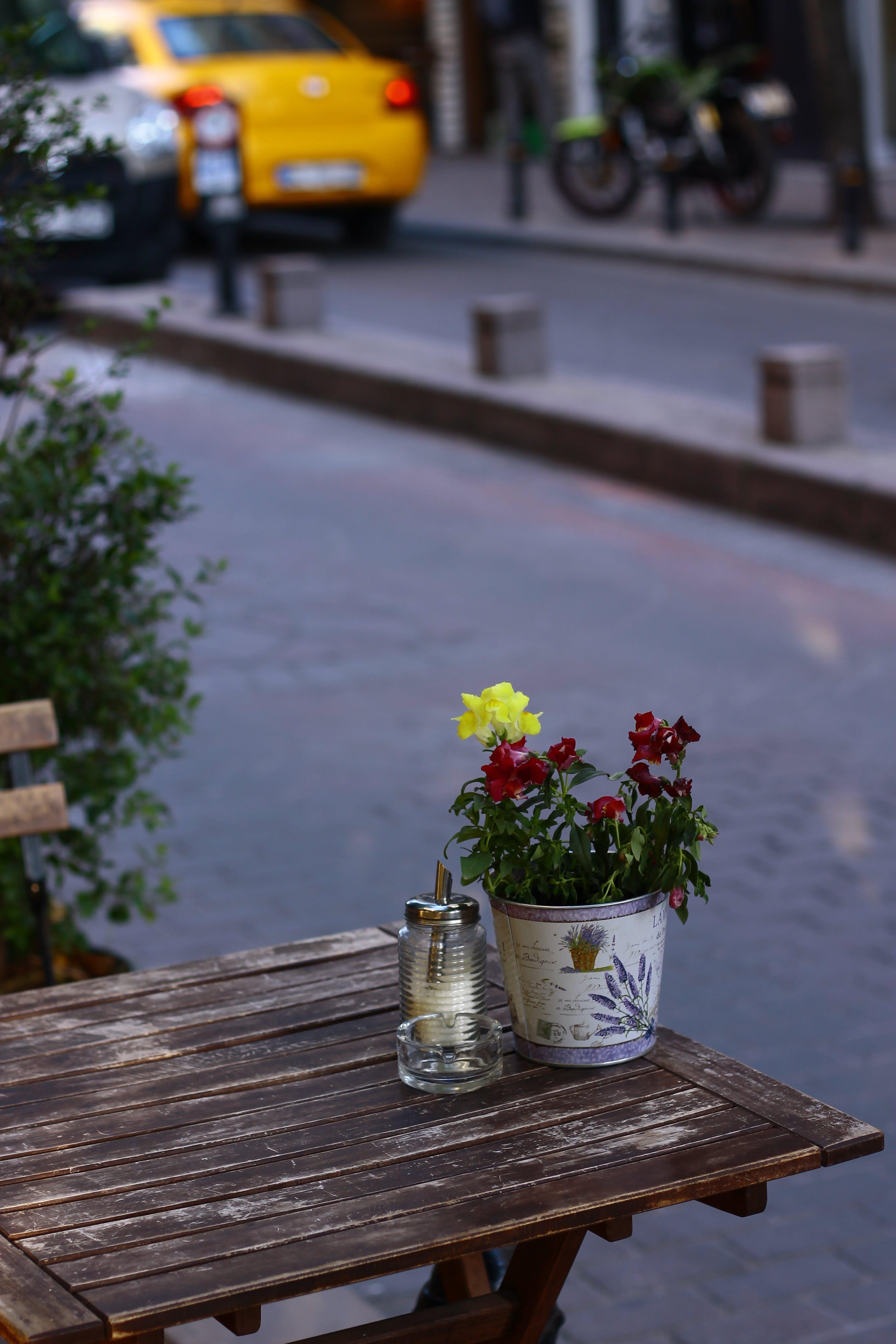 Free stock photo of çiçek, cihangir, Masa, restoran