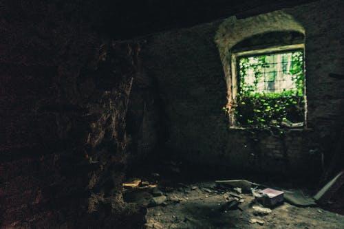 インドア, ダーク, 壁, 屋内の無料の写真素材