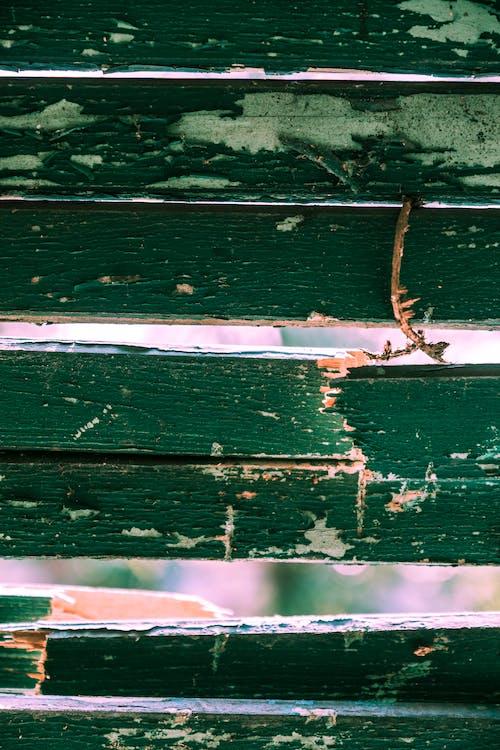 Gratis stockfoto met close-up, euro pallet, gebroken, groen