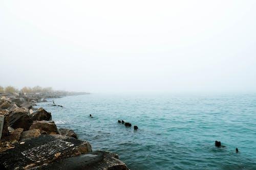 คลังภาพถ่ายฟรี ของ ชิคาโก, ทะเลสาบมิชิแกน, น้ำทะเลสีฟ้า, ภูมิทัศน์ริมน้ำ