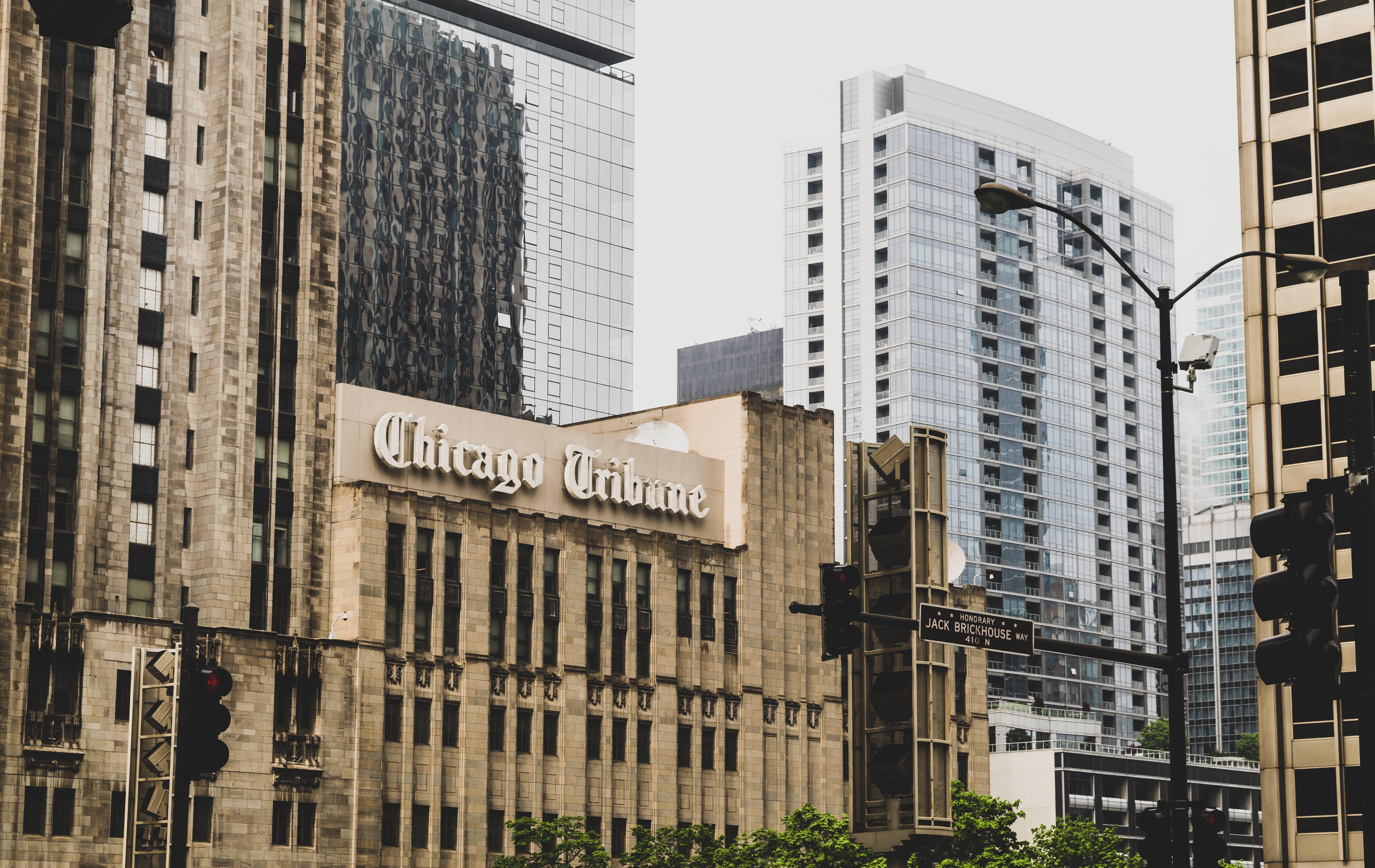 Chicago Tribune Building Near Green Leaf Tree at Daytime