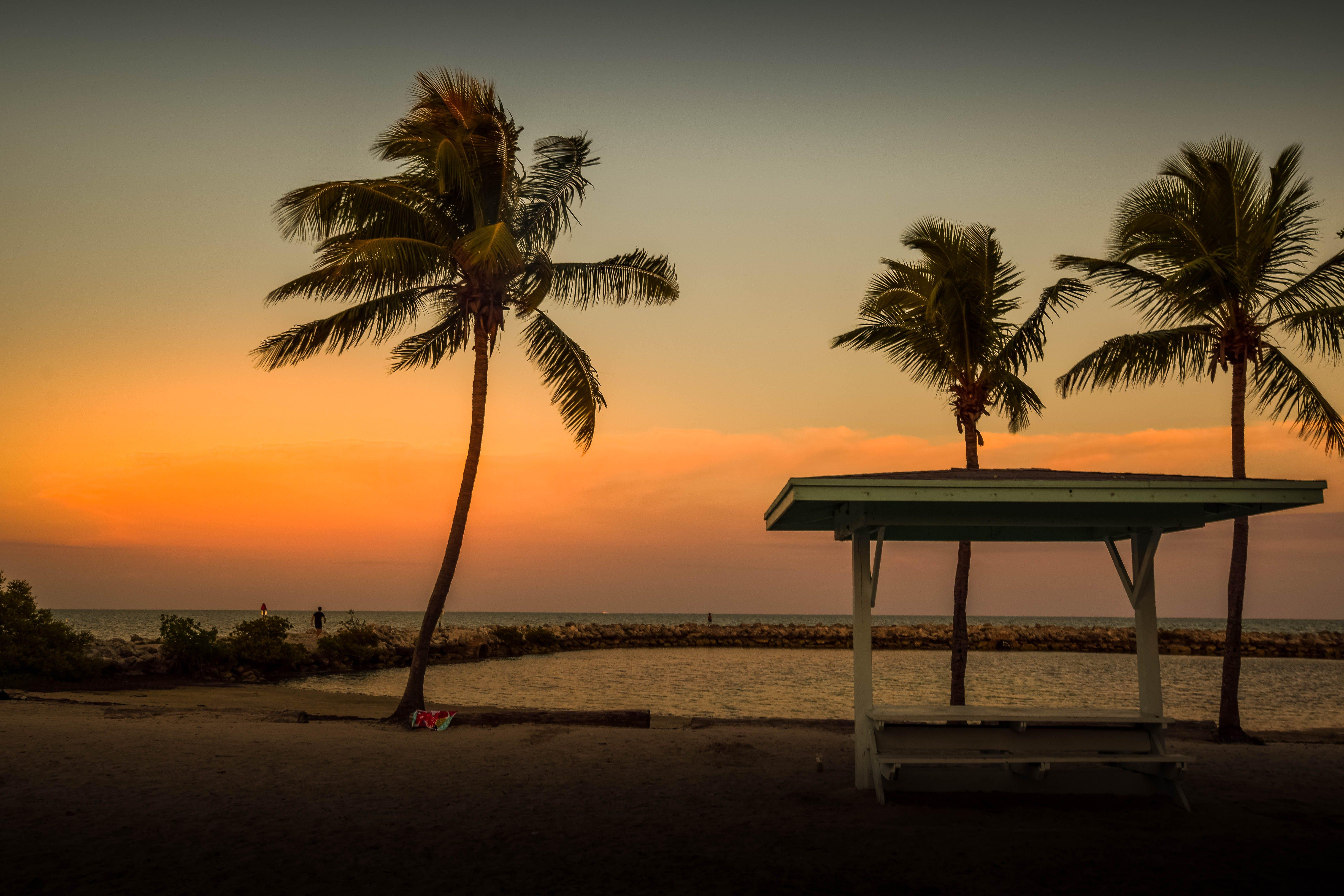 Free stock photo of sunset, ocean, florida, golden sunset