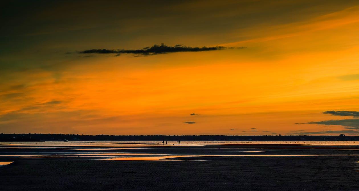 nuevo brunswick, Oceano, orilla del océano