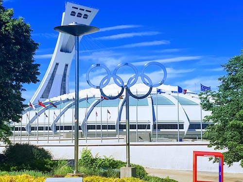 Kostnadsfri bild av fotbollsarena, idrottsarena, montreal, olympiastadion
