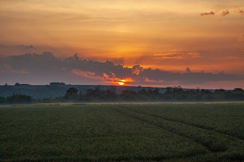 日の出, 朝の光, 朝の太陽の無料の写真素材