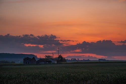 Základová fotografie zdarma na téma ranní slunce, ranní světlo, svítání