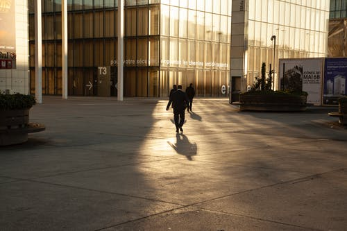Základová fotografie zdarma na téma budova, odrazy světla, podnikatel, práce
