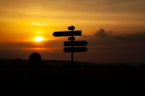 Základová fotografie zdarma na téma dopravní značka, ranní slunce, ranní světlo, svítání