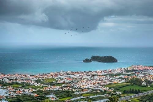 Foto d'estoc gratuïta de Açores, aigua, cases, ciutat