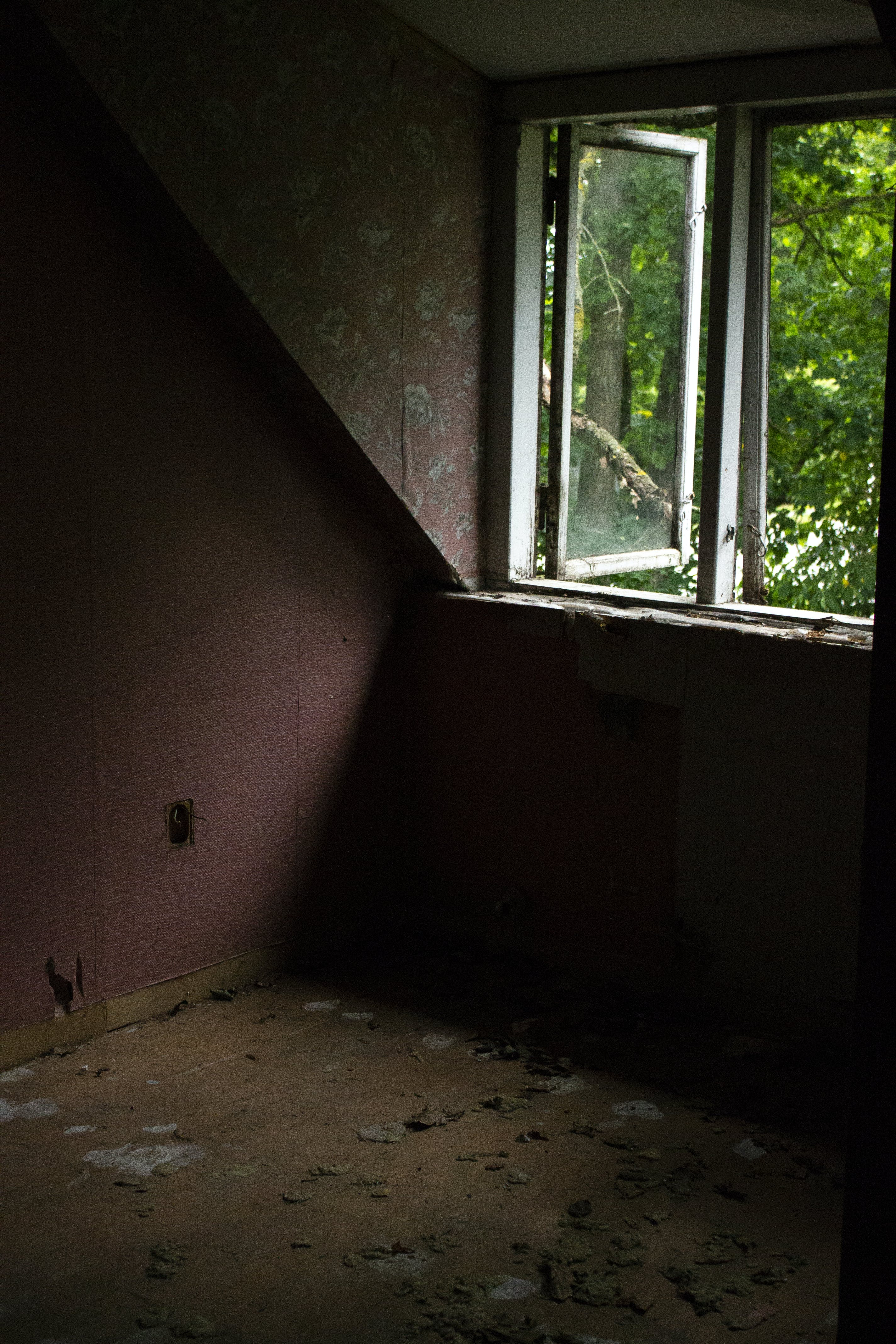 Free stock photo of abandoned, abandoned building, building, dark green