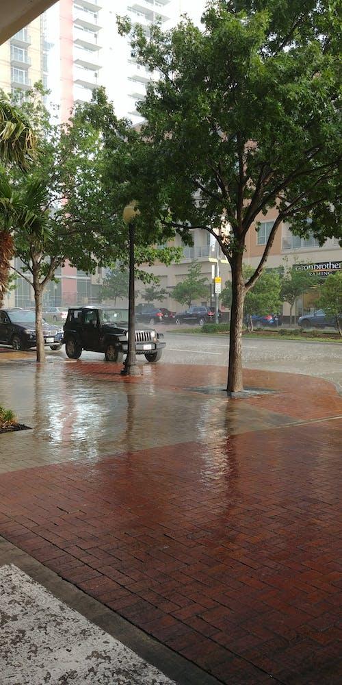 Immagine gratuita di pioggia a uptown dallas
