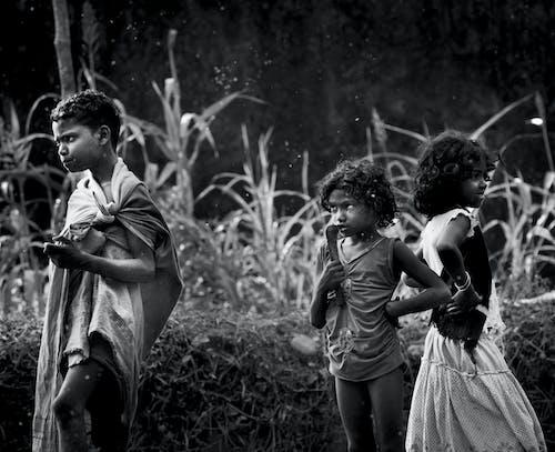 Foto d'estoc gratuïta de #forest #tribes #monochrome