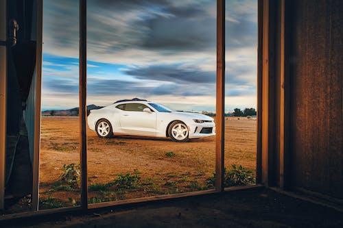 Imagine de stoc gratuită din auto, automobil, Camaro, coupe