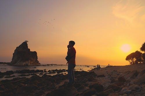 Ilmainen kuvapankkikuva tunnisteilla auringonlasku, hiekkaranta, maisema, meri