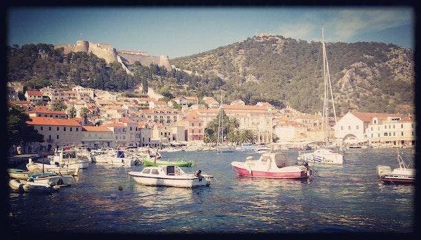 Free stock photo of sea, boats, port, summer