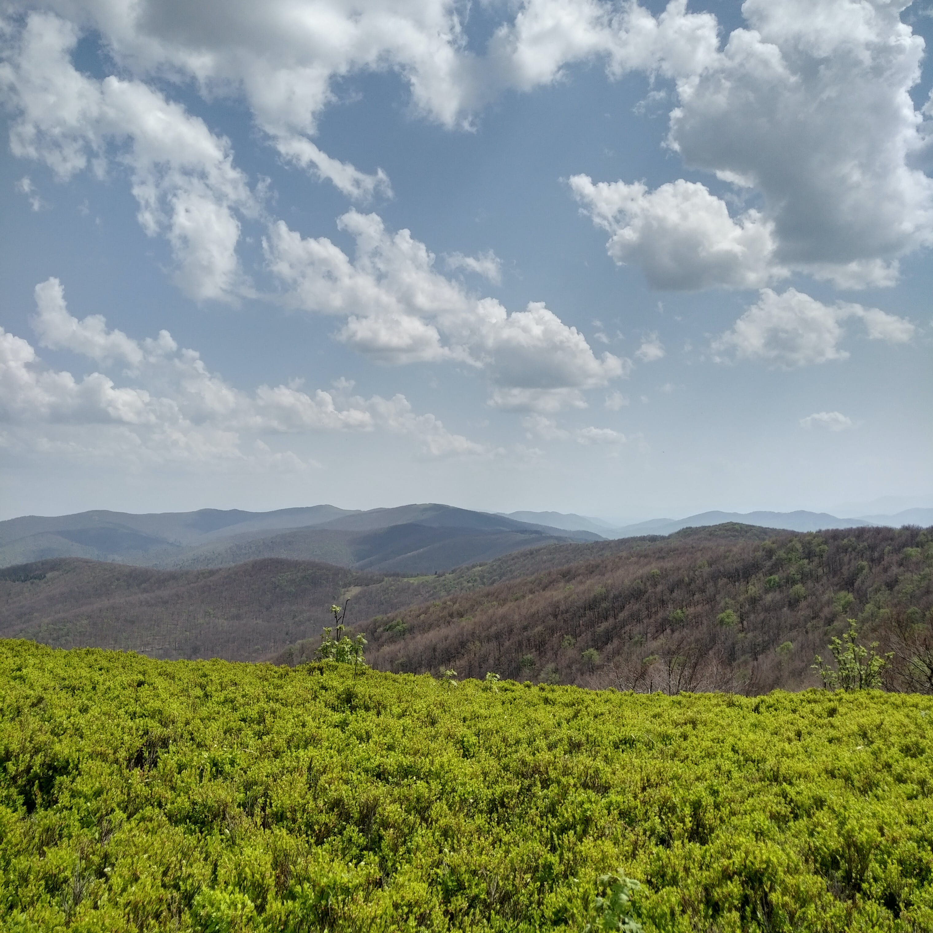 Free stock photo of Bieszczady, clouds, contrast, green