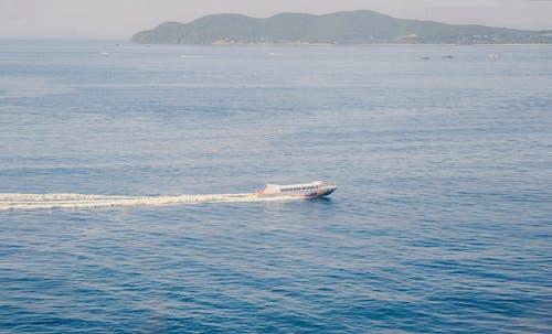 水, 汽艇, 海景, 海洋 的 免費圖庫相片