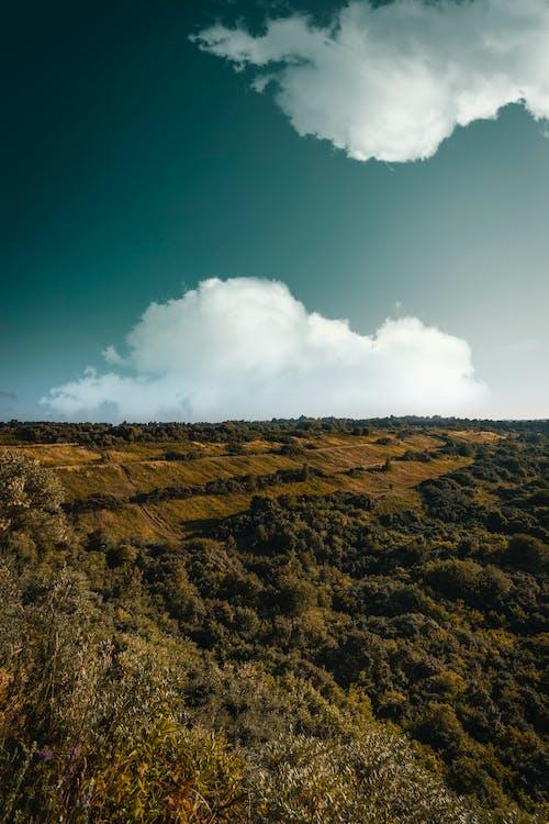 Gratis arkivbilde med åker, ås, daggry, landskap