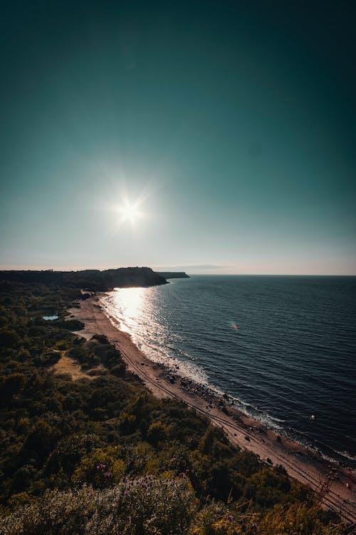 Foto d'estoc gratuïta de aigua, arbres, davant de la platja, horitzó