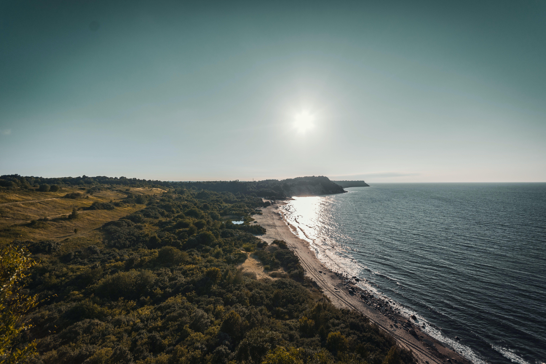 Foto d'estoc gratuïta de aigua, arbres, Costa, davant de la platja