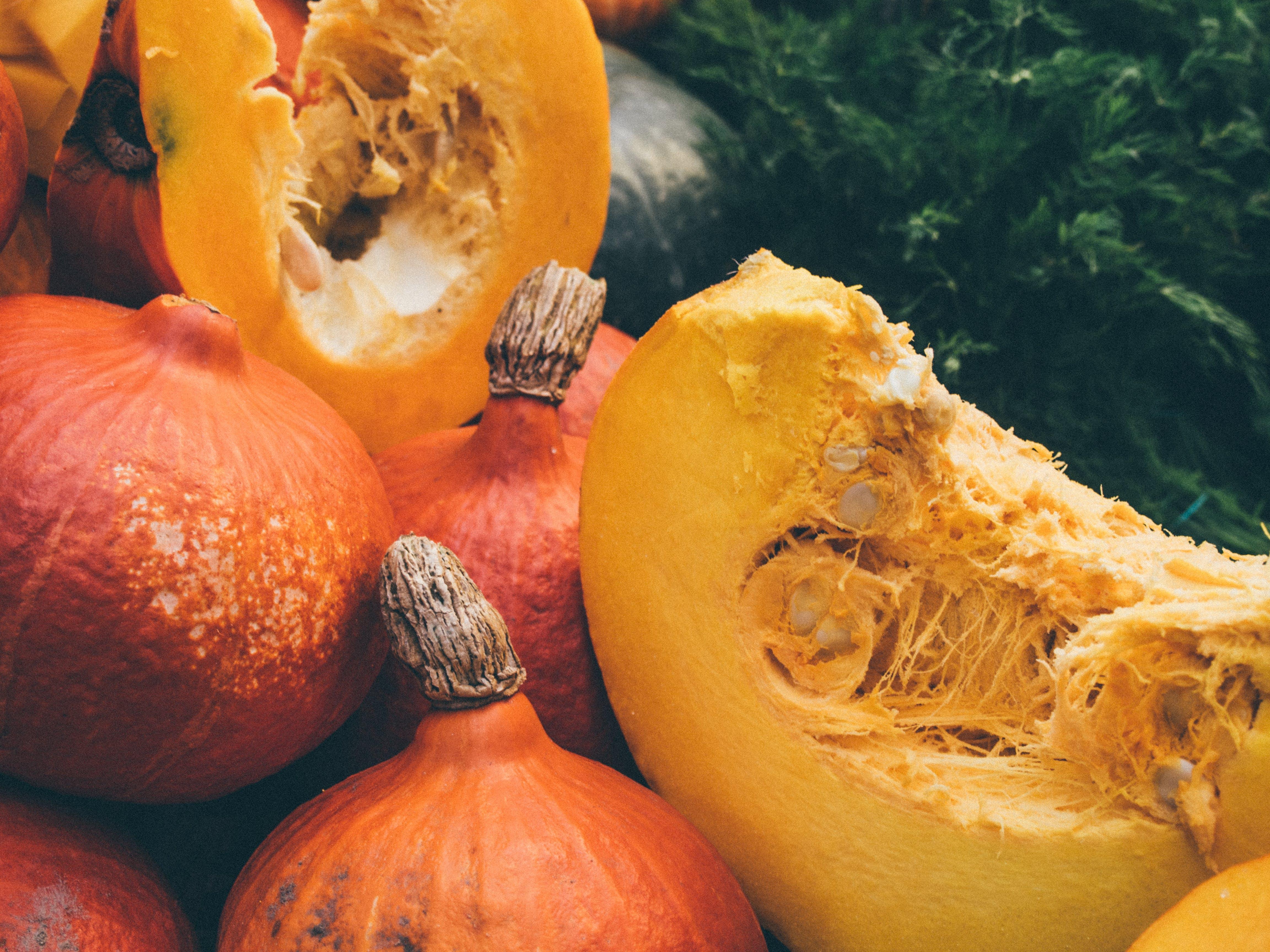 autumn, fall, theme-autumn
