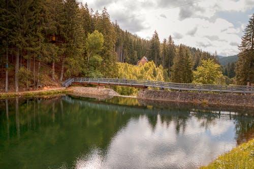 Kostnadsfri bild av bro, landskap, natur, naturskön