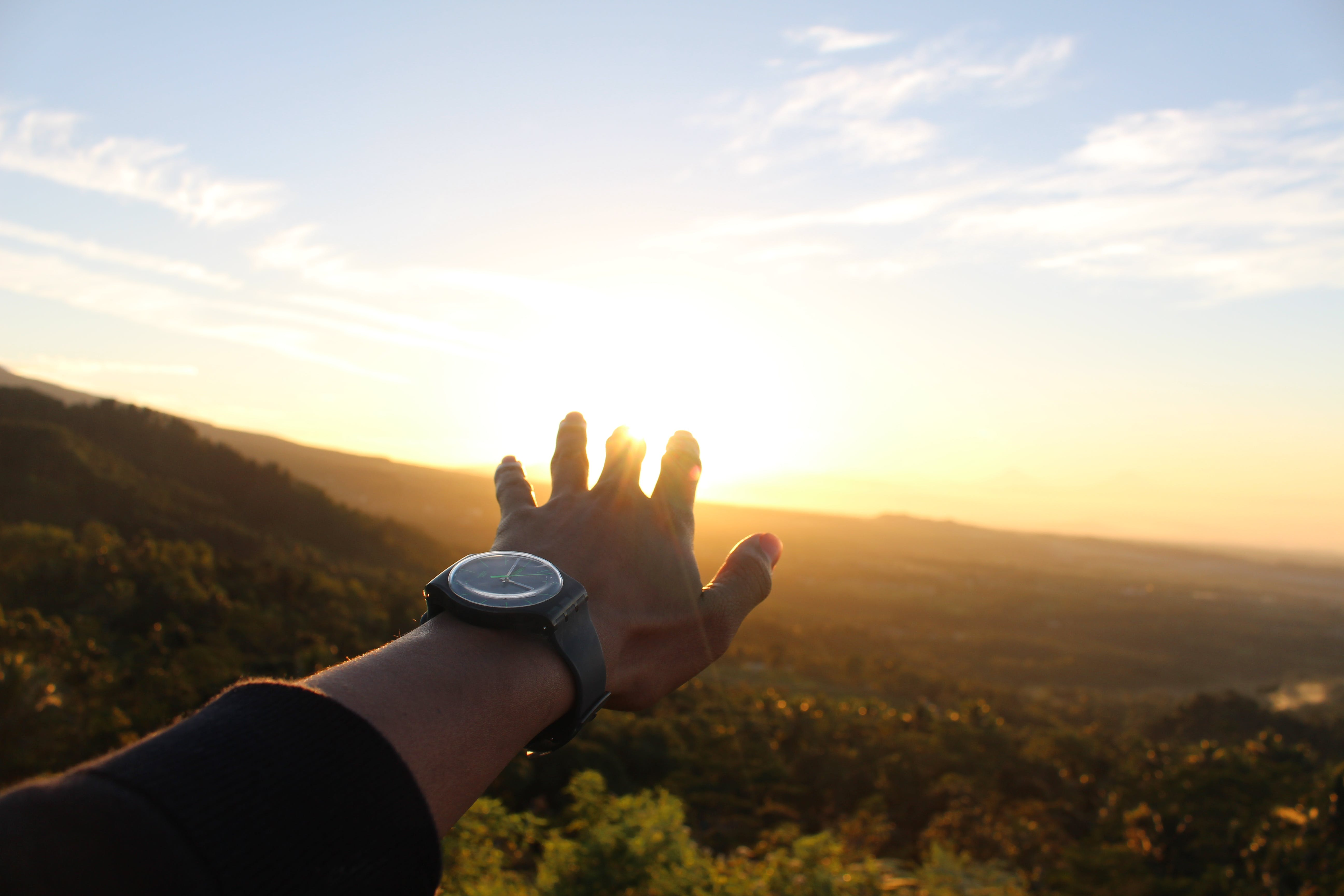 Person's Left Hand During Golden Hour
