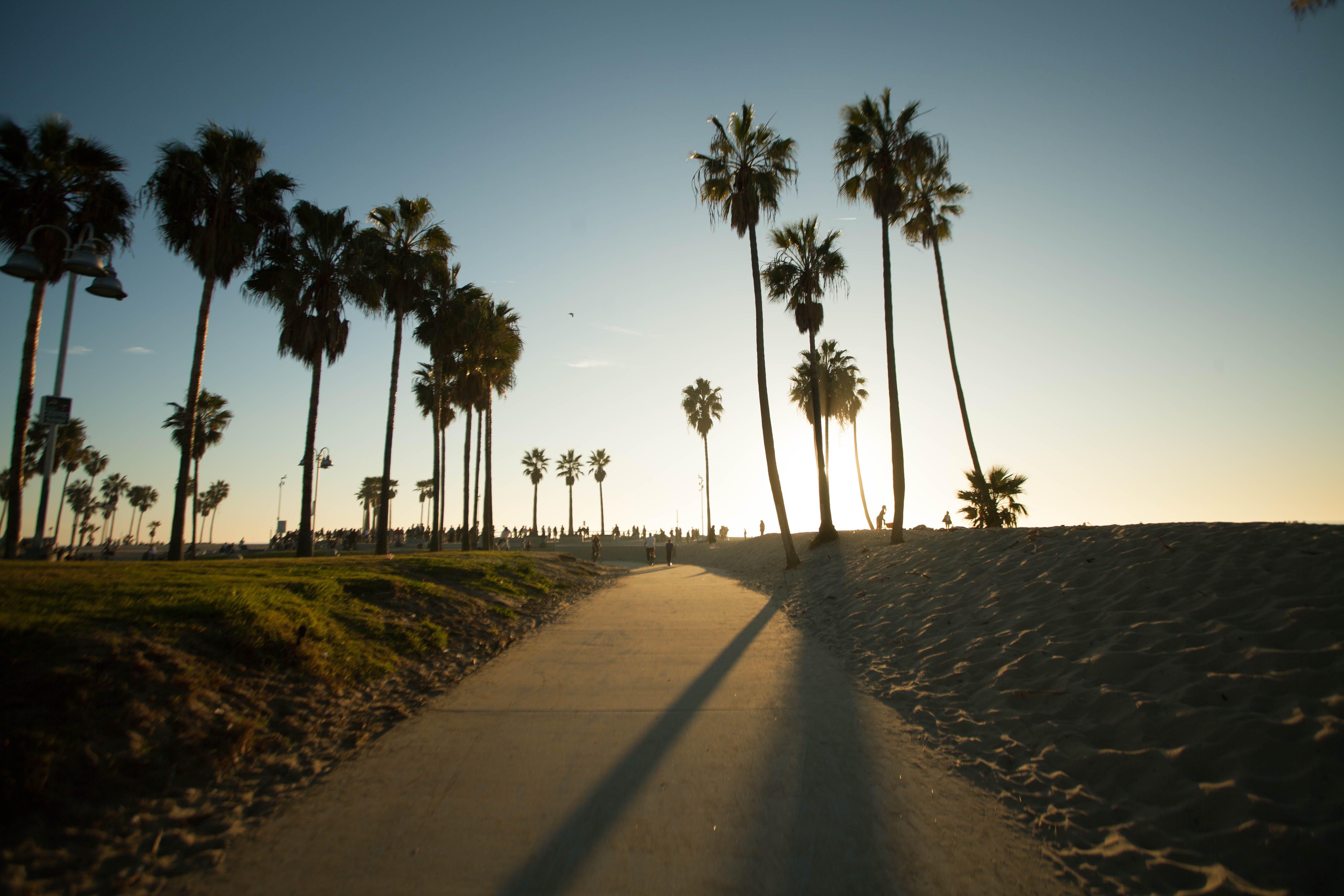 Free stock photo of beach, usa