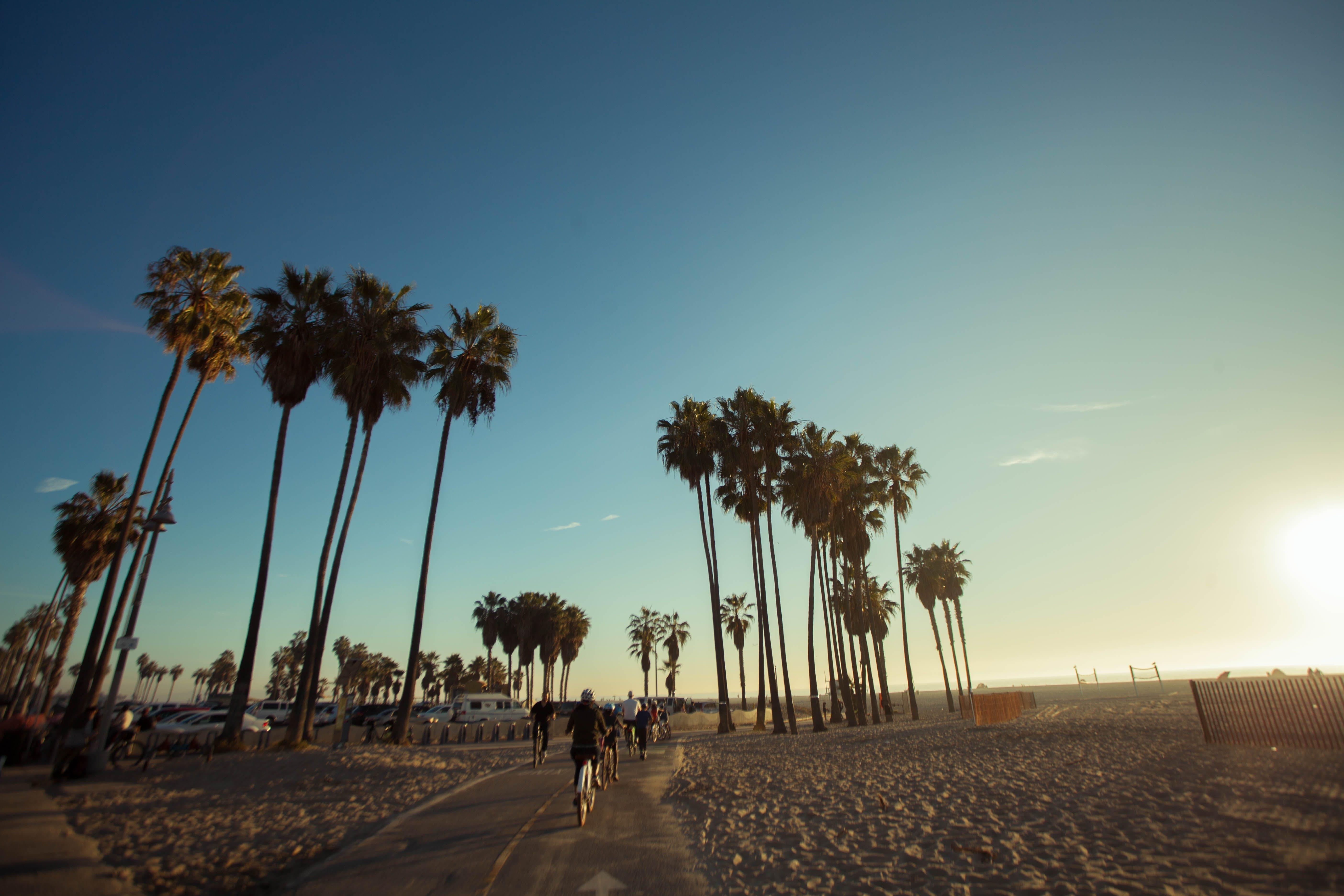 Free stock photo of beach, golden sun